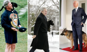 Cats, dogs, birds, horses and even a raccoon: A brief history of White House pets